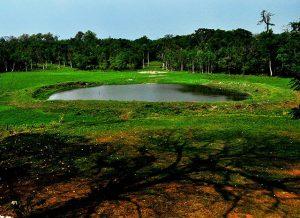 Waterhole in Chapramari