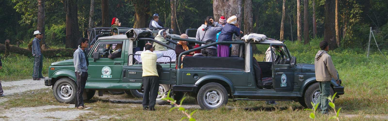 Jeep Safari in Jaldapara