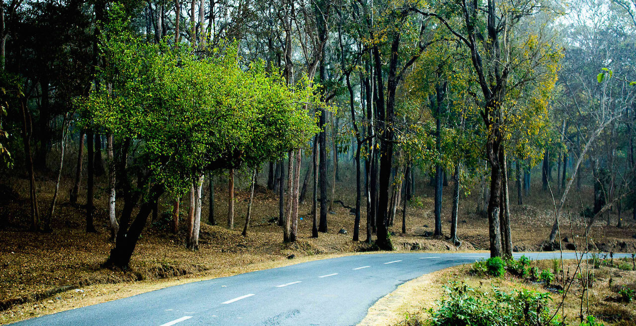 Hire Rental Car In Dooars With North Bengal Tourism