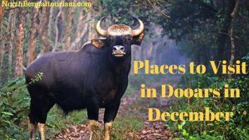 Placesto Visit in Dooars in December