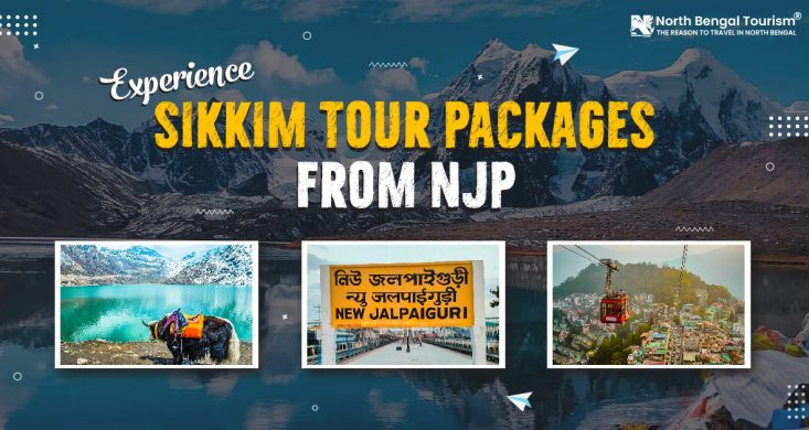 sikkim tour packages from njp