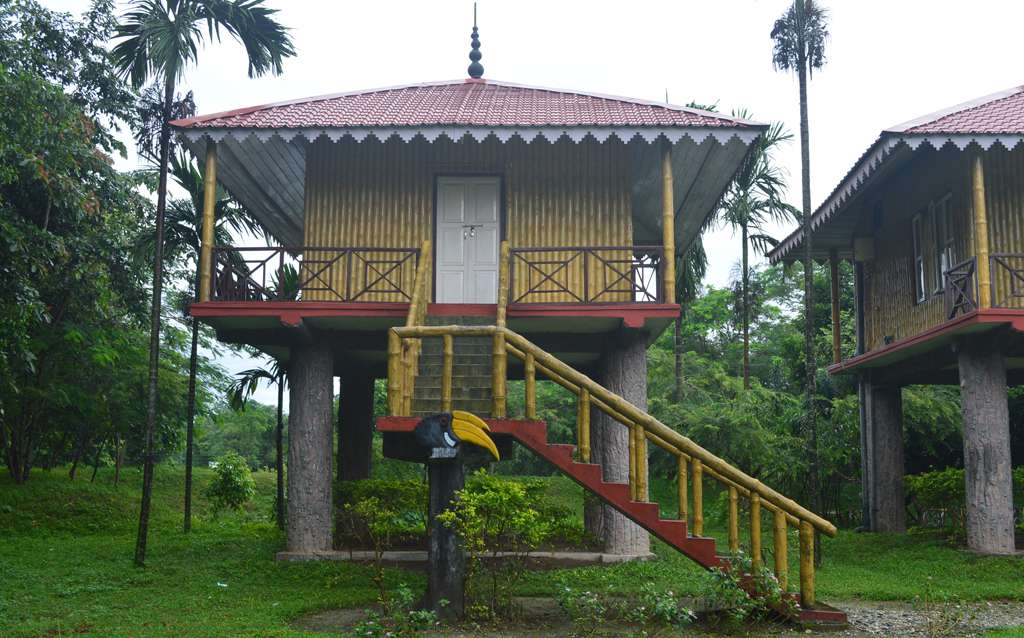 Cottages at Gorumara Hornbill Nest