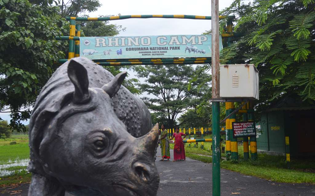 Rhino Statue in front of Rhino Camp