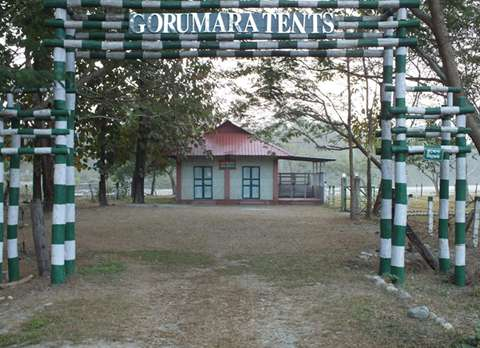 Gorumara Tents, Murty