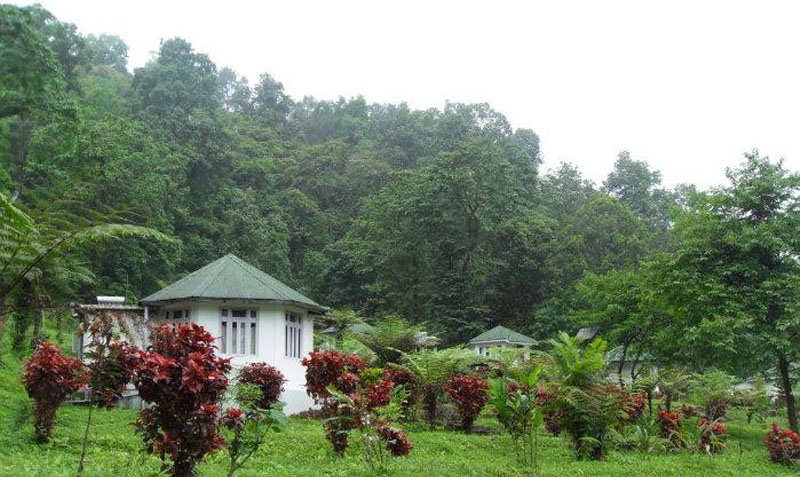 Samsing Forest Rest House