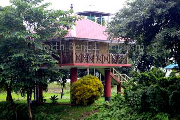 Hotels in Gorumara National Park