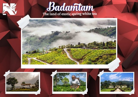 Badamtam, offbeat destination in Darjeeling