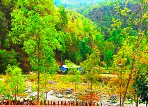 Bidyang, offbeat destination in Kalimpong