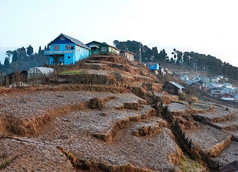 Dhotrey, offbeat destination in Darjeeling