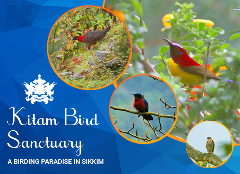 Kitam Bird Sanctuary