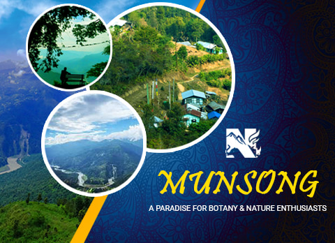 Munsong, offbeat destination in Kalimpong