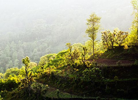 Rinchenpong, offbeat destination in Sikkim