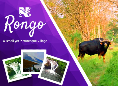 Rongo, offbeat destination in Dooars