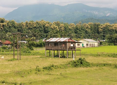 Suntalekhola , offbeat destination in Dooars