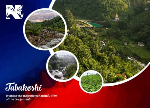 Tabakoshi, offbeat destination in Darjeeling
