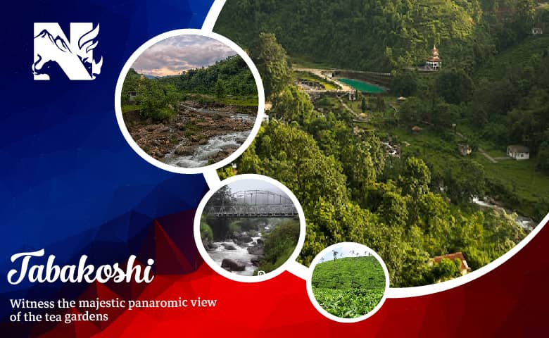 Tabakoshi, a New offbeat destinations in Darjeeling