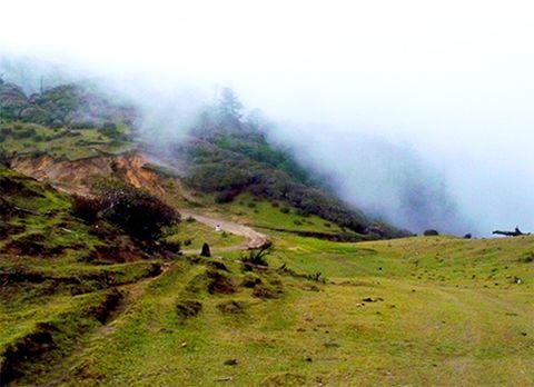 Tonglu and Tungling, offbeat destination in Darjeeling