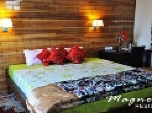 Book Non-AC Double Executive  at Magnolia Residency, Darjeeling